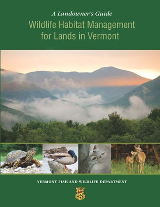 Vt fish wildlife announces release of landowner s for Vermont fish and wildlife