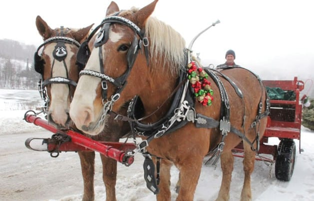 Vermont Holiday Festival returns to Killington
