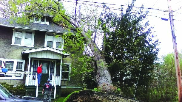 Friday windstorm left 21,000 without power, cleanup continues
