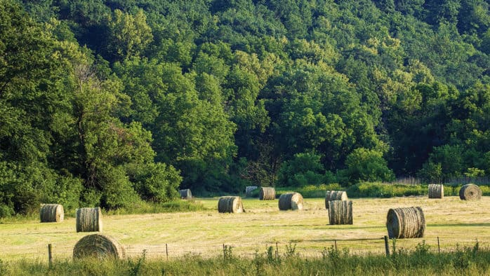 Extended dry weather hinders area farmers