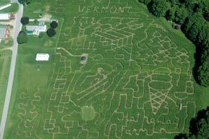 RYP's October meet-up heads to a corn maze