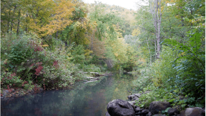 Study group would help guide policies on access to Vermont's surface water