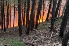 Killington-Forest-Fire_By-Murray-McGrath_IMG_4681-2