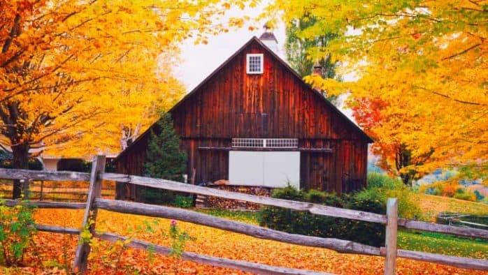 Fall foliage brilliant on area peaks