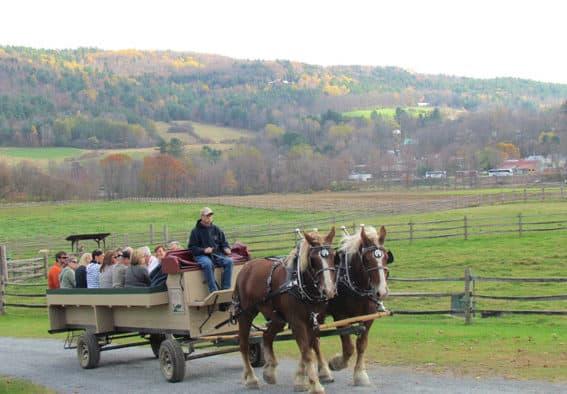Billings Farm holds Wagon Ride Weekend
