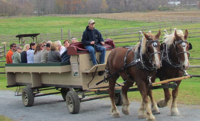Billings holds Wagon Ride Weekends during month of November