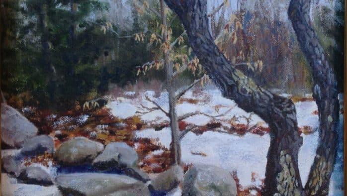 Brandon Artists Guild Members' Show reveals Winter in Vermont
