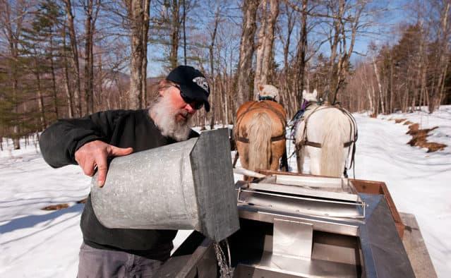 Vermont sugar makers celebrate spring