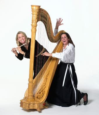 "VSO musicians ""Harp and Soul"" to perform in two area schools"