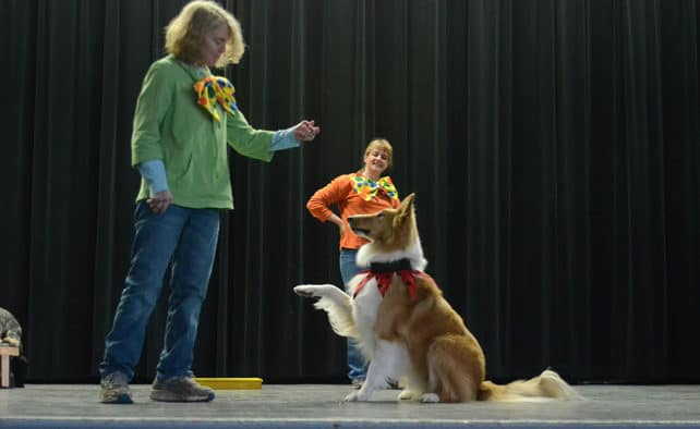 Tails wag at shelter fundraiser