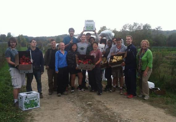 Hands-on volunteer opportunities await in the fields