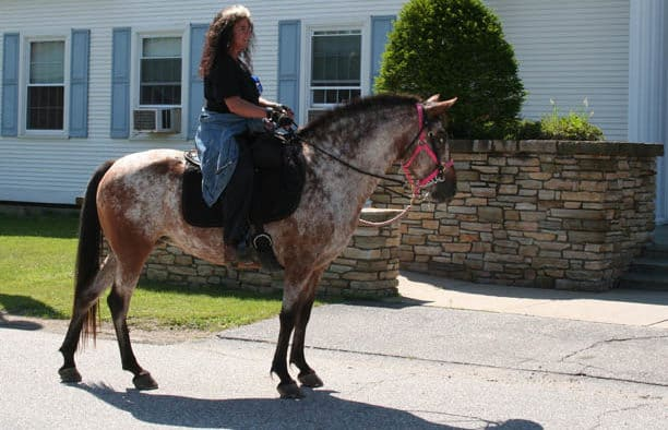 CSJ's Muffie Harvey rides to raise money for breast cancer research