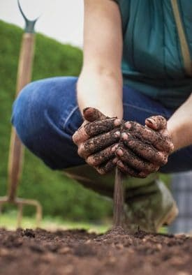 Amendments can help produce healthy soil