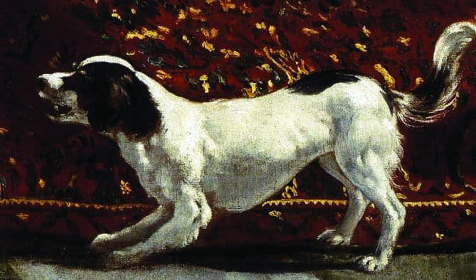 Reflecting on dogs presented in art