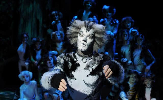 """Catch """"Cats the Musical"""" in Woodstock"""