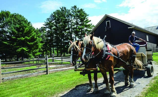 The foliage is cooperating for Wagon Ride Weekend at Billings Farm & Museum