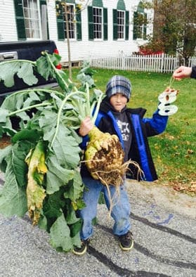 Seeking entries for Gilfeather turnip contest