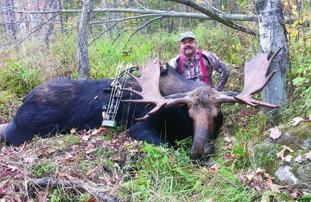 "Vermont moose face ""tick epizootic"""