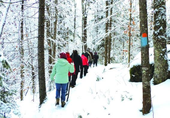 Join Vermont State Parks for free, guided 2017 First Day hikes