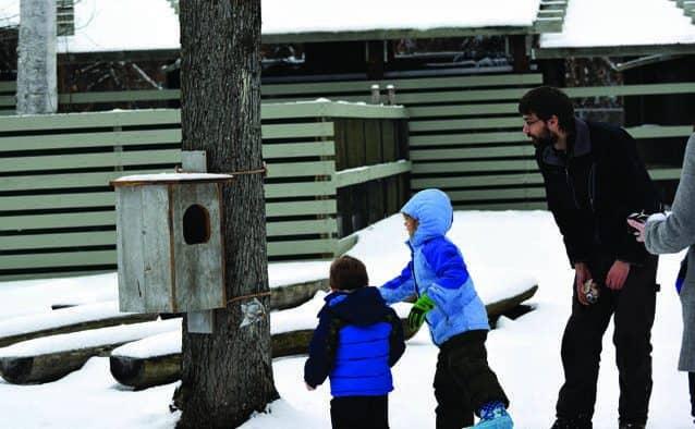 VINS presents eighth annual Winter Wildlife Celebration