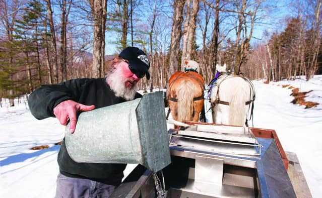 Maple Open House weekend: Vt.'s premier spring event kicks off the sweetest season
