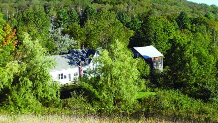 VINS presents forest ecology walk to off-the-grid property in Washington