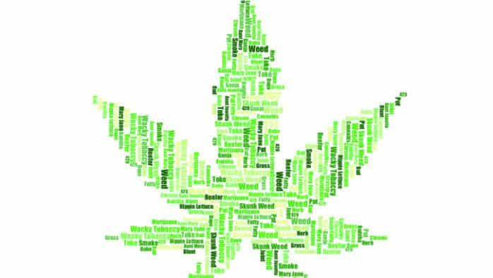 It's ok to toke… your own, in private; Recreational use, possession, growth of marijuana is legal July 1