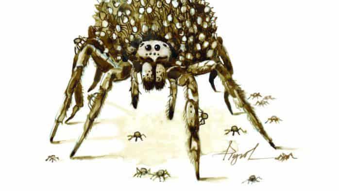 The nurturing nature of spider moms