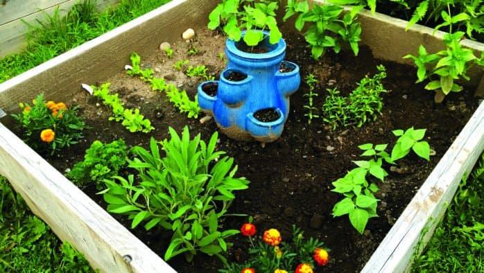 Let's get planting!