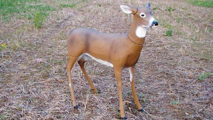 18-year-old apprehended in connection with a deer decoy hit, run