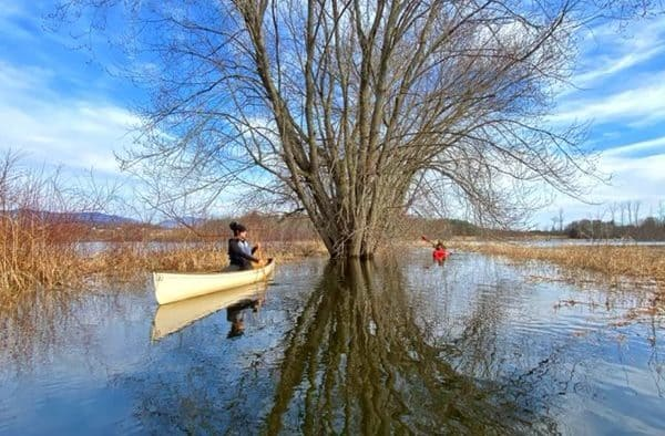 Paddling the flooded forest