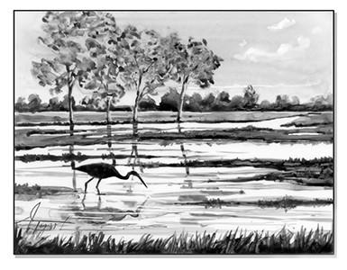 Wetlands filter and enrich the landscape