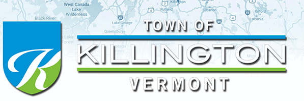 Bristow resigns as Killington planner
