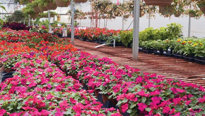 Garland's expands to include floral business