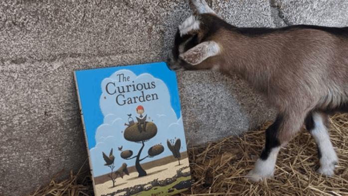 New summer program at Billings Farm & Museum encourages reading