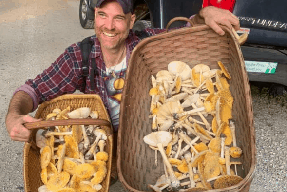 """""""They healed me"""": a life changed by fungi"""