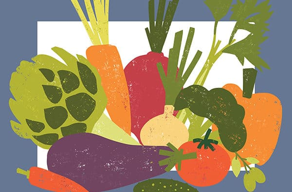 Vermont Farmers Food Center hosts a harvest festival