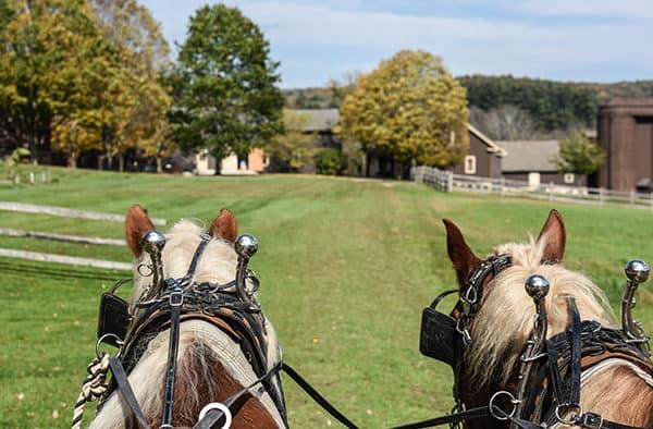 Billings Farm & Museum's Wagon Ride Weekend